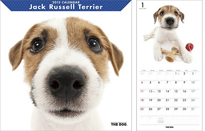 Jrt Gifts Jack Russell Terrier Calendar Section