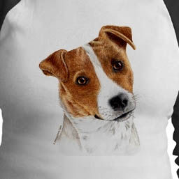 Jack Russell Parson Terrier Running Tod The Camera Turkey Middle East,Fashion Crewneck T-Shirt for Men//Women//Boys//Girls Dog S